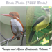 Birds Pedia Vol4 (Europe & Africa Contenents)